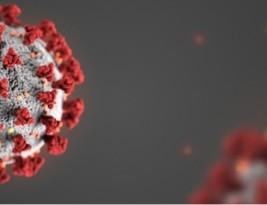 پروتکل های مختلف جهت انجام قرنطینه در کووید ۱۹ –  مرکز کنترل بیماریهای آمریکا